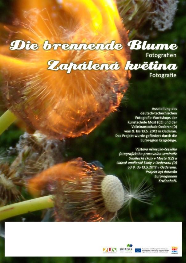 Probíhající výstava studentů - Zapálená květina 2012